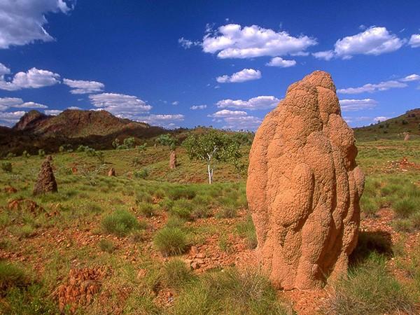 Valami Ausztrália – Miró Fotóklub